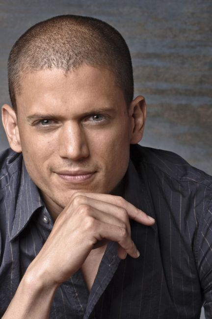 is wentworth miller bisexual